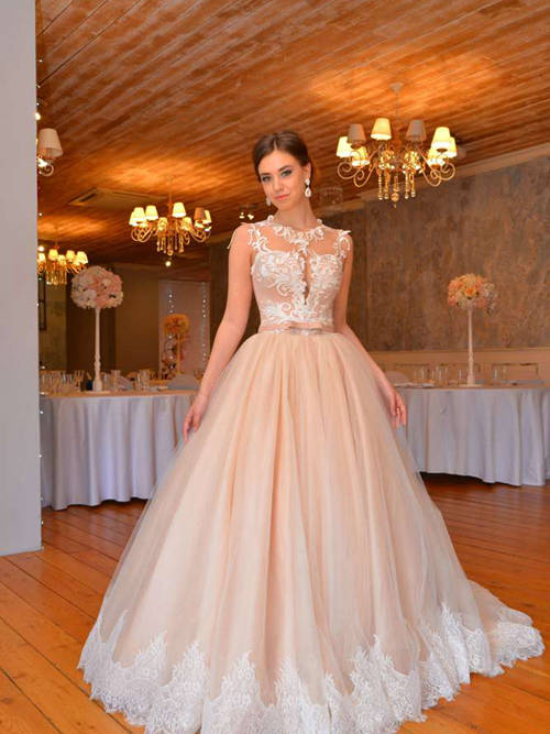 Princess Sheer Tulle Wedding Gown Applique